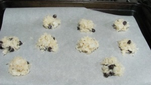 Chocolate chip macaroons passover